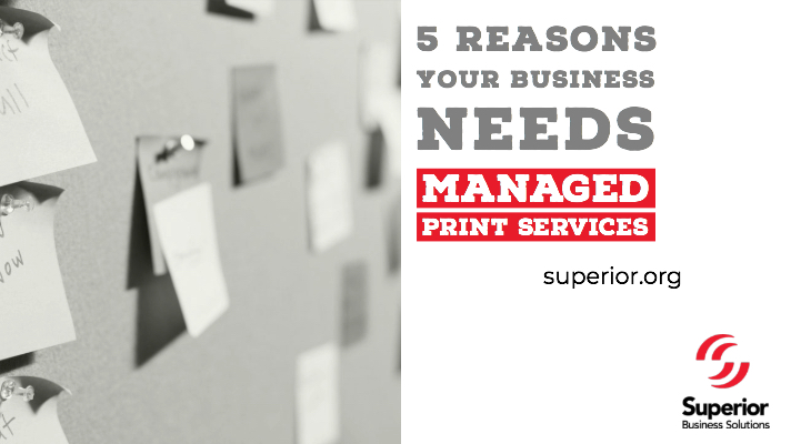 5 Reasons Your Business Needs