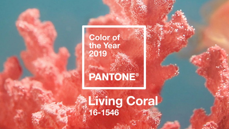 5 Ways to Use The 2019 Pantone Color of The Year